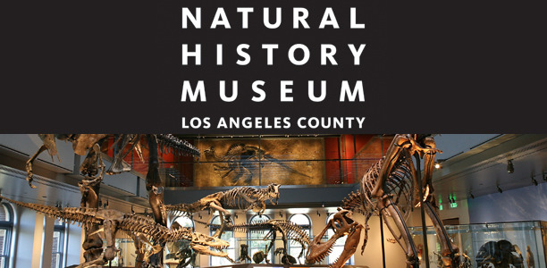 Natural History Museum Los Angeles bcuzuluvme blog