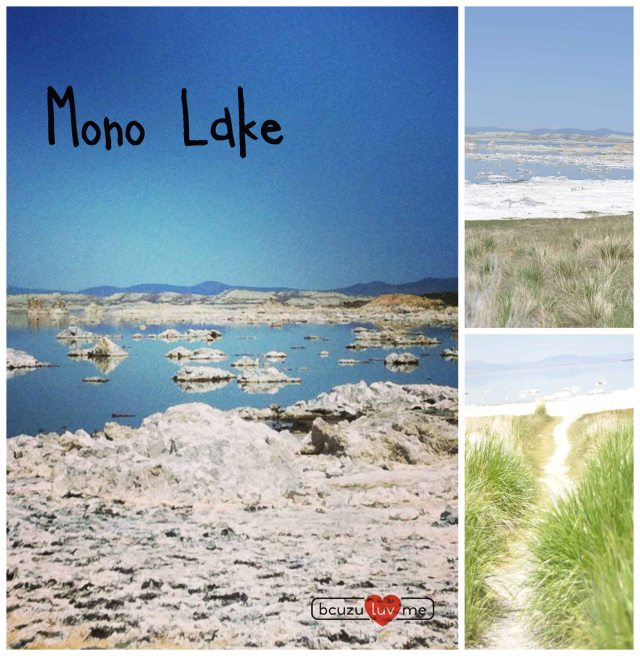 monolakeCollage